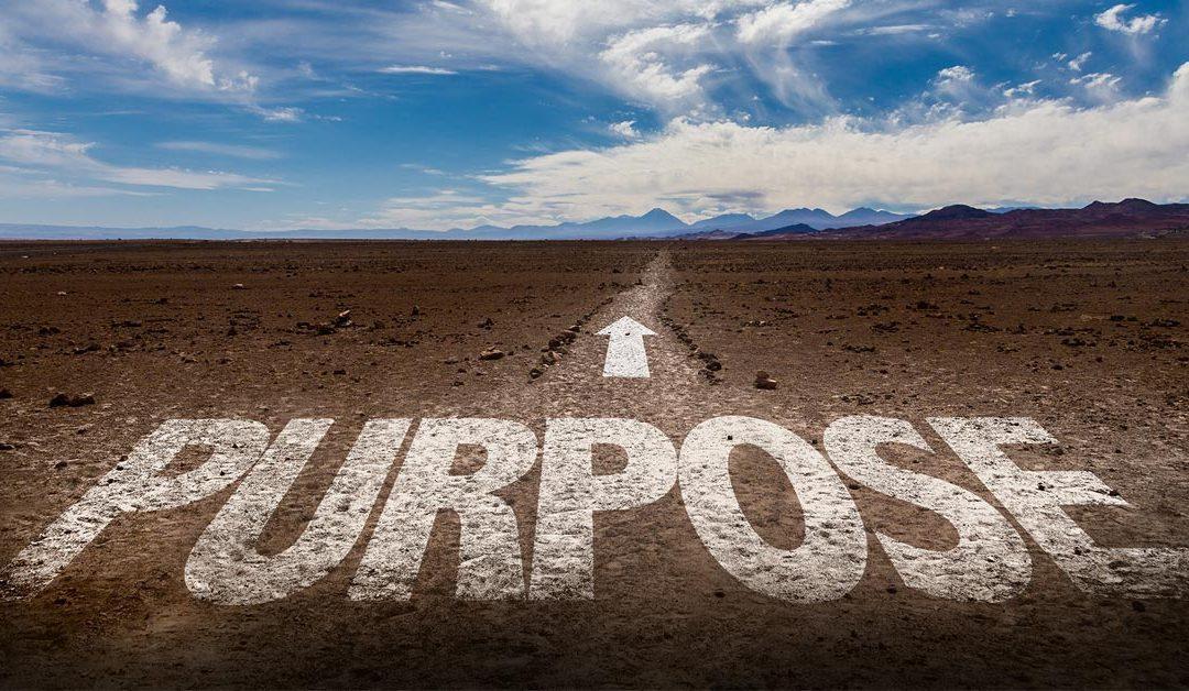 Comece pelo propósito!